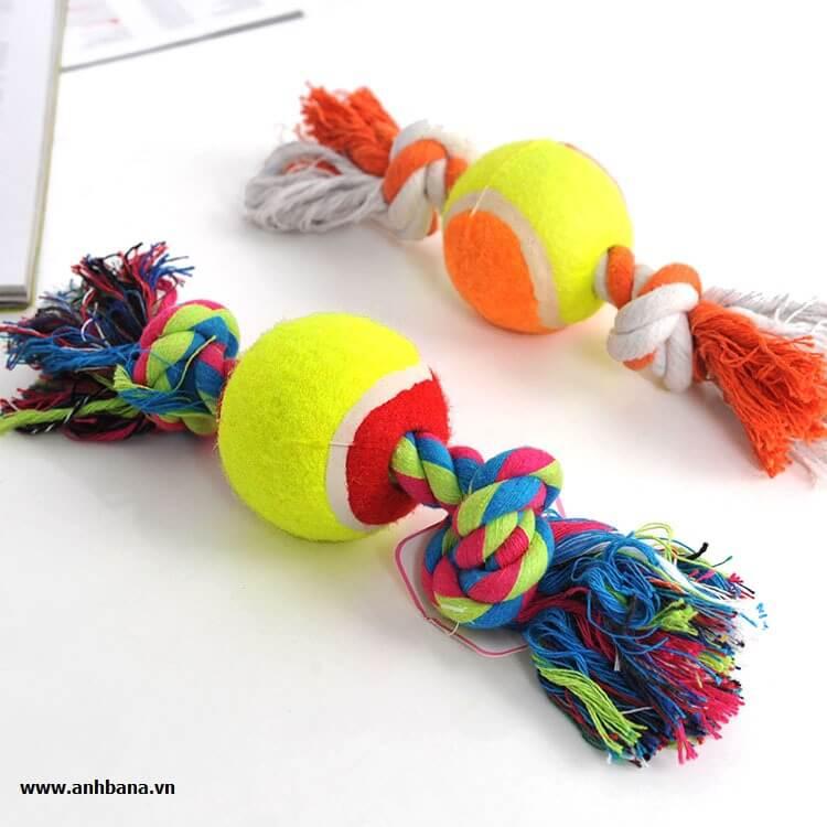 Đồ chơi bóng tennis cho chó ngứa răng
