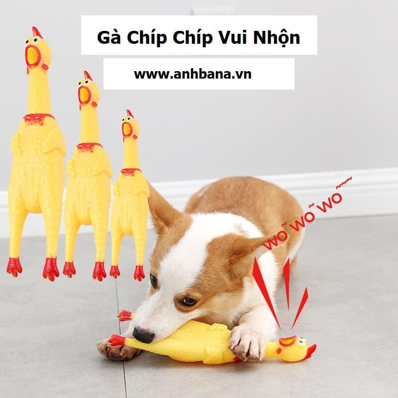 Đồ chơi cho chó gà chip chip
