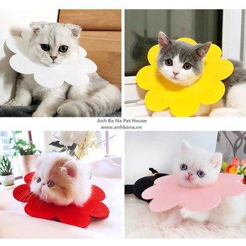 Vòng cổ chống liếm cho mèo hình bông hoa