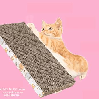 Đồ cào móng cho mèo bìa cứng