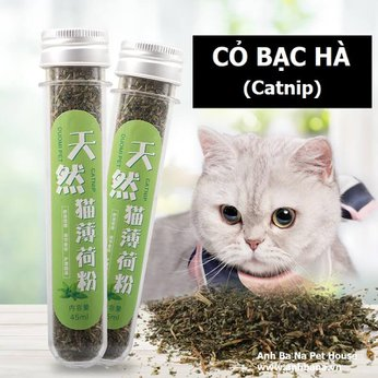 Cỏ mèo khô bạc hà Catnip
