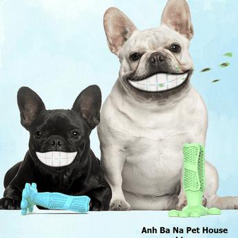 Đồ chơi đánh răng cho chó