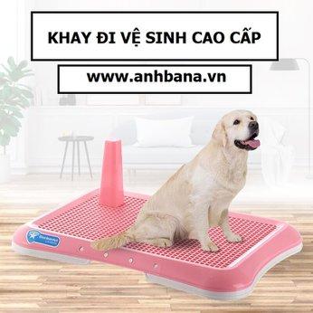 Khay đi vệ sinh cho chó
