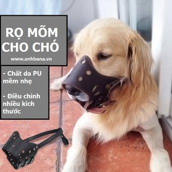 Rọ mõm bằng da cho chó