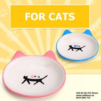 Bát ăn cho mèo gốm sứ cao cấp loại dẹp