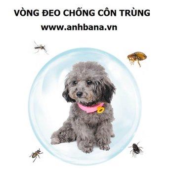 Vòng đeo chống côn trùng cho chó