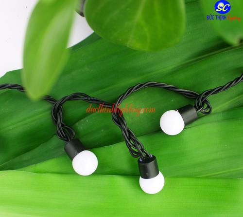 Dây Đèn LED Bi Mini 50 Bóng Số 2