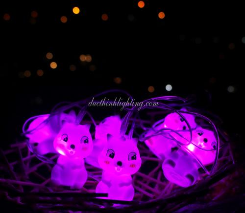 Dây đèn LED Sóc Hồng