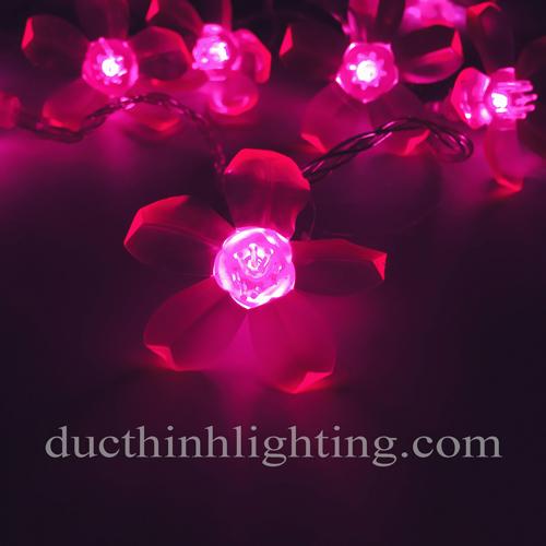 Dây Đèn LED Hoa Đào