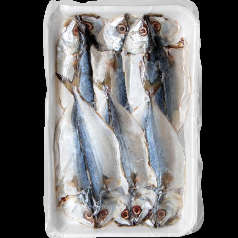 Cá Bạc Má 1 Nắng Xẻ Tải - Hải Sản Sạch Phan Thiết - HAINAMFOODS