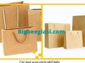 Địa chỉ bán túi giấy đựng quà có quai xách giá rẻ TPHCM