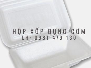 Bán gía sỉ hộp xốp đựng cơm loại nhỏ tại TpHCM