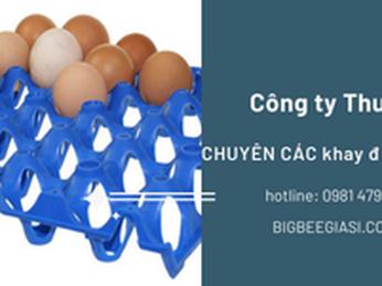 Bán khay nhựa đựng trứng 30 quả màu xanh giá rẻ