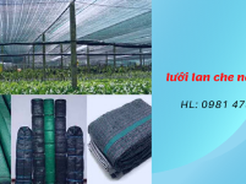 Bán lưới che nắng trồng rau giá rẻ TpHCM