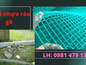 Cách Chọn Lưới Nhựa Để Làm Hàng Rào Chăn Nuôi Gà Vịt