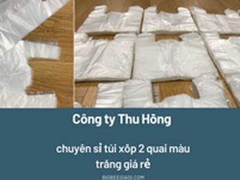 Bỏ sỉ túi xốp 2 quai màu trắng giá sỉ tại TpHCM