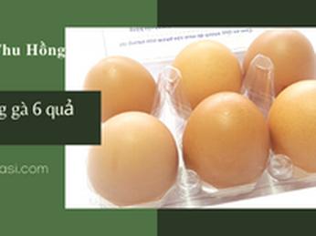 Bán sỉ vỉ đựng trứng gà 6 quả nút bấm - vỉ đựng trứng 6 quả gim bấm