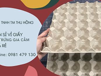 Vỉ giấy đựng trứng gia cầm giá rẻ Tp.HCM