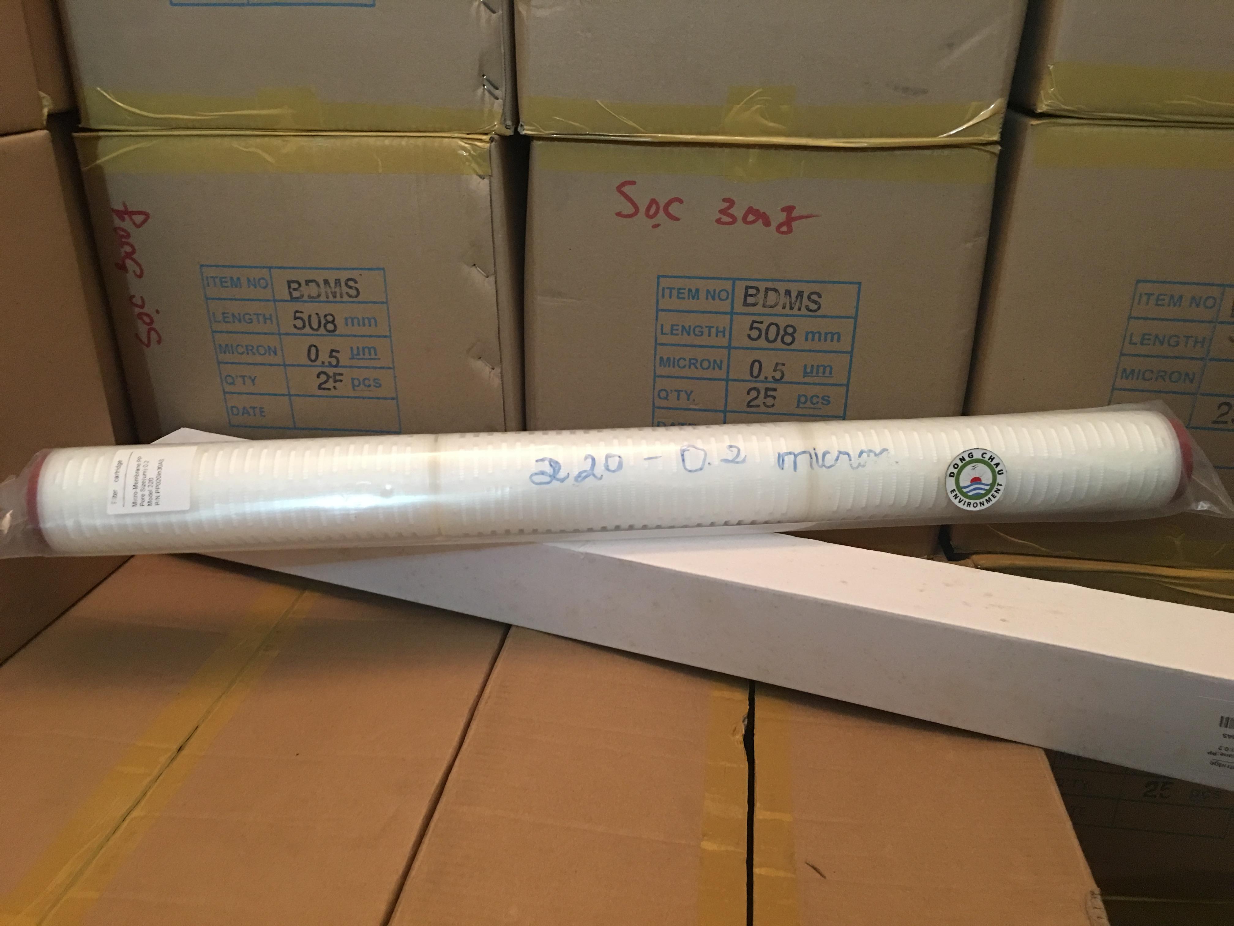 Lõi lọc giấy xếp 0.2 micron 30 inch oring 220