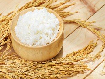Ăn 1 đến 2 bát cơm mỗi ngay giúp giảm tình trạng béo phì