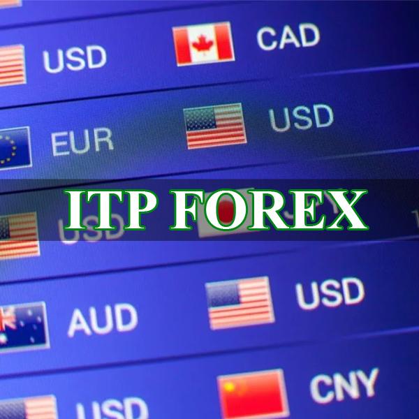 Cung cấp tín hiệu giao dịch Forex, Copy Trade Forex