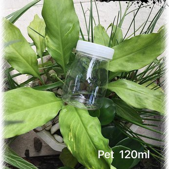 Hủ nhựa pet 120ml