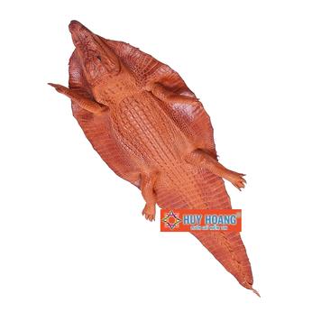 Da thuộc da cá sấu nguyên con có đầu màu vàng HH1253