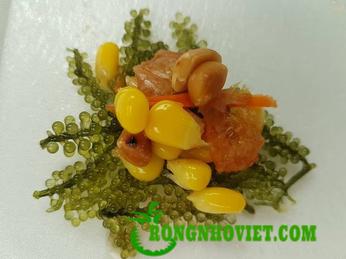 Salad rong nho món ăn tăng dinh dưỡng rau xanh cho gia đình