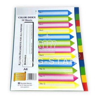 Phân trang nhựa 12 màu - không số  (12 a4 color index dividers)