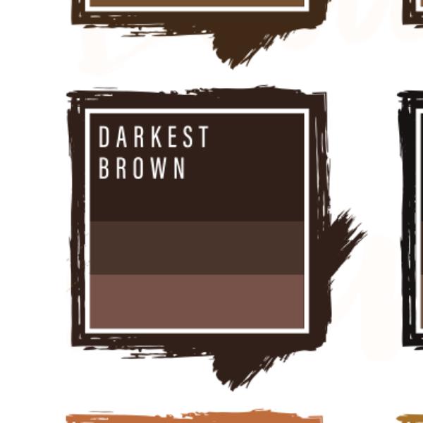Mực phun xăm perma blend - Perma Blend Darkest Brown - Phun Chân Mày