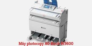 Cho thuê máy photocopy A0 - giải pháp trọn vẹn cho doanh nghiệp