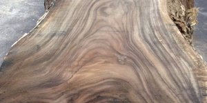 Gỗ còng với hệ vân siêu đẳng, còn chất lượng gỗ còng có tốt không?
